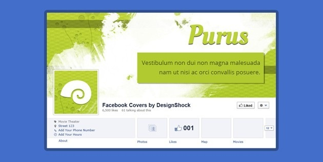 Professional fb Covers