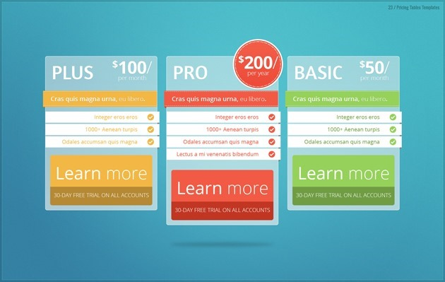 pricing table Professional