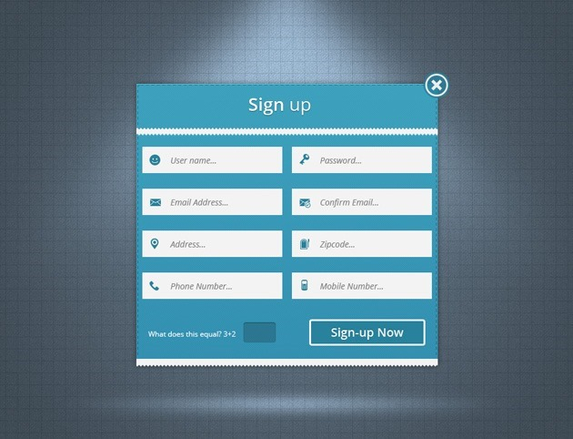 Web Sign up form