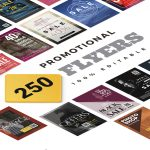 250 Promotional Flyers